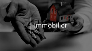 placements immobilier défiscalisation 44 & 85